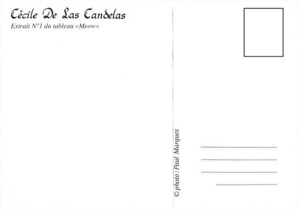 Carte Meow N°1, Cécile De Las Candelas artiste peintre